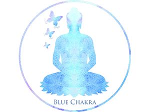 Blue Chakra Mindfulness& Meditation studio and Zen Den Therapy room
